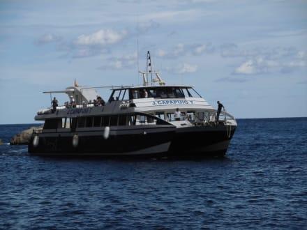 Rundfahrtschiff - Nofrills - Excursions