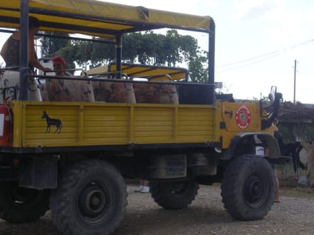Unimog - Unimog Safari Side