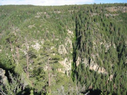Oak Creek Canyon - Oak Creek Canyon