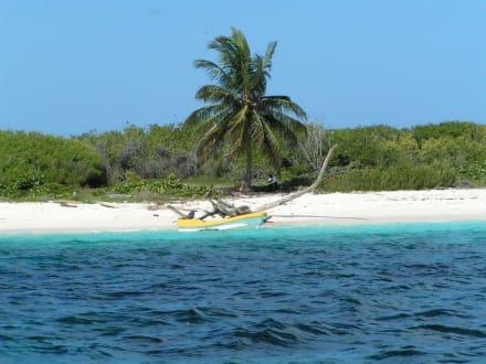 Unbewohnte Insel in der Karibik - Isla Saona