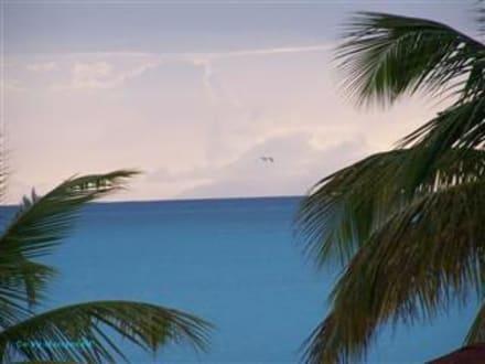 Blick vom Jolly Beach nach Redonda - Strand Jolly Harbour