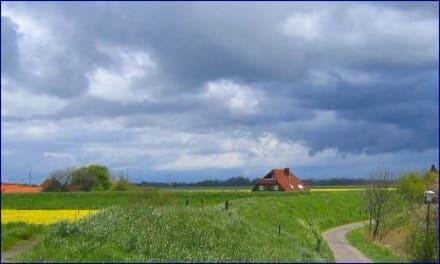 Blick über den Osterdeich - Osterdeich