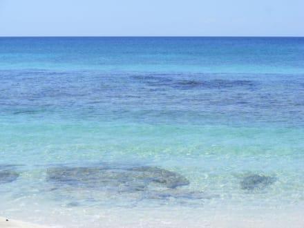 Catalina Strand - Strand Insel Catalina