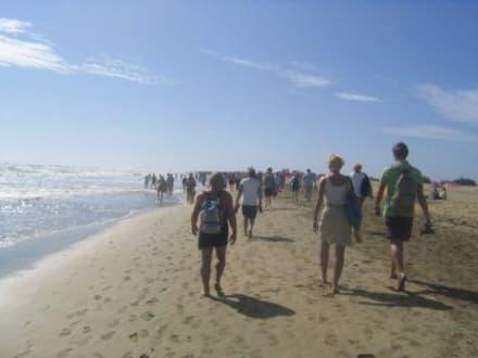 Schreckliche Völkerwanderung - Strand Playa del Ingles