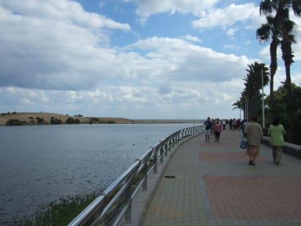 Dünen - Shoppingcenter Boulevard El Faro