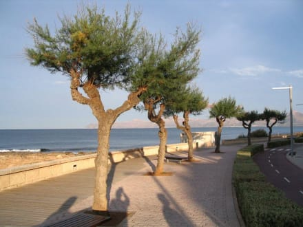 Spaziergang über die Promenade - Strand Can Picafort