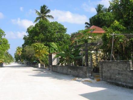 Hauptstrasse - Radfahren Addu Atoll