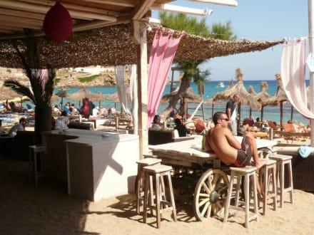 Beach - Bar - Paradise Beach