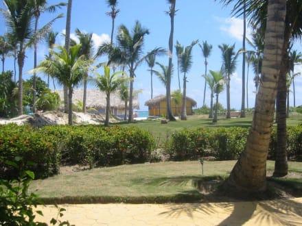 Ausblick von unserer Terrasse -  Bavaro Princess All Suites Resort, Spa & Casino