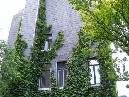 Sonstige Gebäude - Zentrum Brüssel