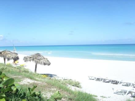 Strand - Barcelo Solymar Beach Resort
