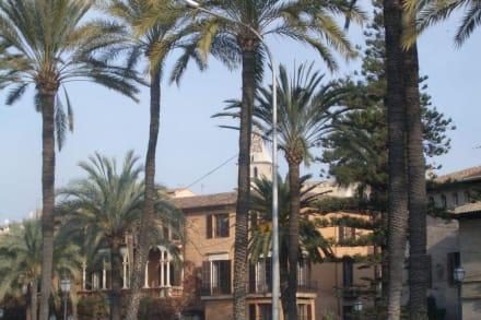 Palma Stadt - Altstadt Palma de Mallorca