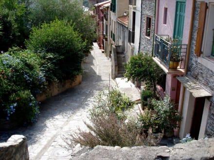 Altstadt von Collioure - Altstadt Collioure