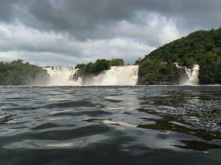 Wasserfälle von Canaima - Wasserfälle von Canaima - Salto Sapo