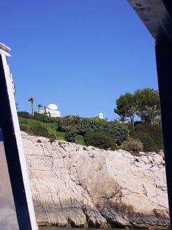Ganz nah - Glasbodenboot Tour San Miguel
