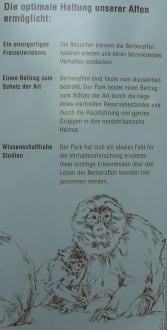 Informationstafel Affenberg in Salem - Affenberg