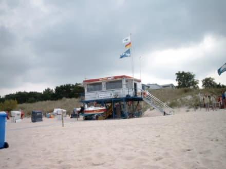 Hauptstrandzugang - Strand Trassenheide