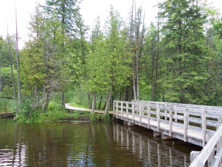 Nature reserve/Zoo - Stony Swamp Conservation Area