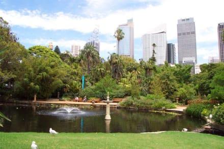 Idylle pur vor der Skyline - Botanischer Garten Royal Botanic Gardens