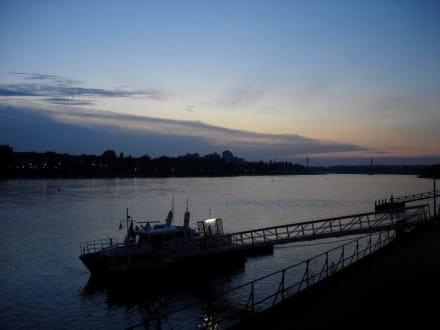 Blick über den abendlichen Rhein - Beueler Bahnhöfchen