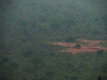 Safari - Tsavo West Nationalpark