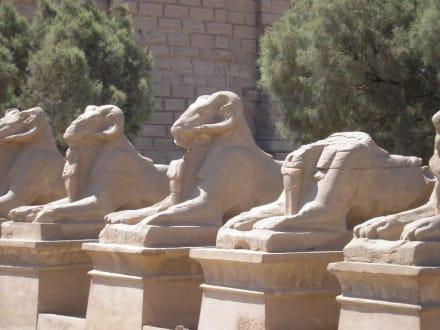 Kurz Hinter dem Eingang des Tempels - Amonstempel Karnak