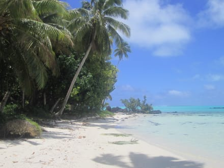 Playa/costa/puerto - Aitutaki Adventures Water Activities