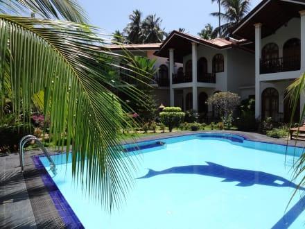 Blick über den Pool - Hotel Bentota Village