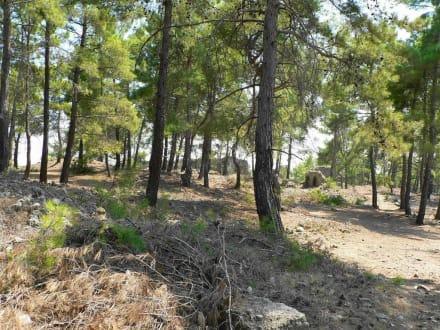 Umgebung mit Ruinen - Antike Stadt Seleikeia (Lyrbe)