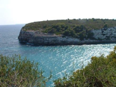 Einer der schönen Ausblicke von der Hotelanlage - Hotel Blau Punta Reina