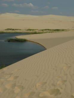 Dünenlandschaft im Süden Vietnams - Sanddünen