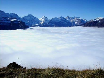 Panoramaweg Männlichen-Kleine Scheidegg (3) - Männlichen Gipfel