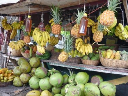 Jamaikaner kennenlernen