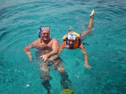 Sonstiges Freizeitbild - Schnorcheln Sharm el Sheikh