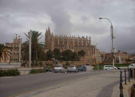 Gesamtansicht - Kathedrale La Seu
