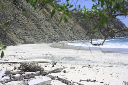 strand barrigona - Strand Barrigona