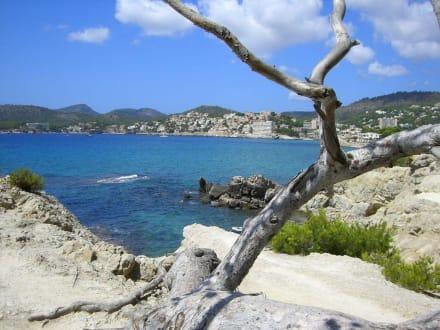 Blick auf Paguera - Strand Paguera/Peguera