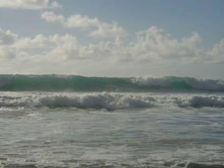 Hammerwellen in El Cotillo - Surfen