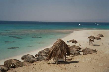 Insel Mahmya Traumhaft - Giftun / Mahmya Inseln