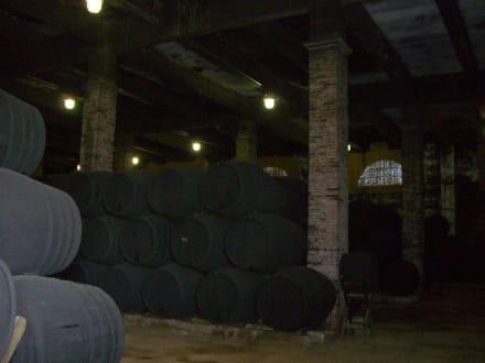 Lagerhalle des Sherry-Weins - Bodega Tio Pepe