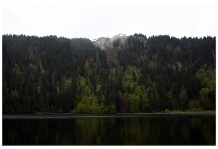 Der Feldsee am Feldberg - Feldsee