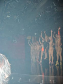 Die Show - Transvestiten-Show Calypso (Asia Hotel)
