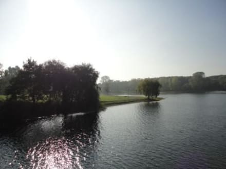 Wetter Fühlinger See