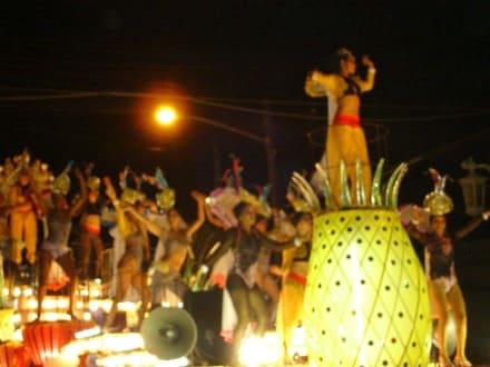 tanzende Früchtchen - Palmares