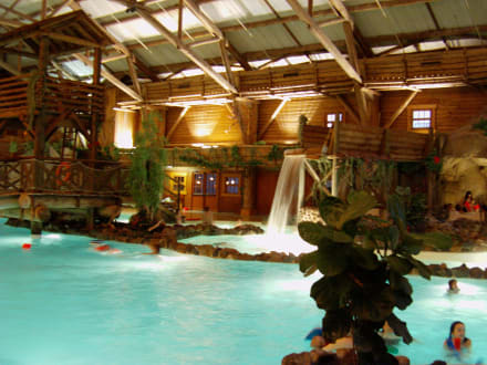 Piscine  - Hotel Disney's Davy Crockett Ranch