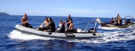 Tauchen von Land und Boot ohne Aufpreis - Tauchbasis Buceo Sub La Palma Los Cancajos