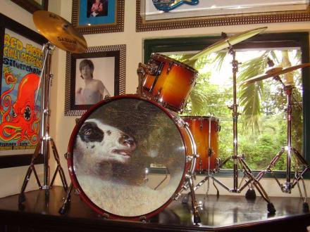Hard Rock Cafe Mallorca Geschlossen