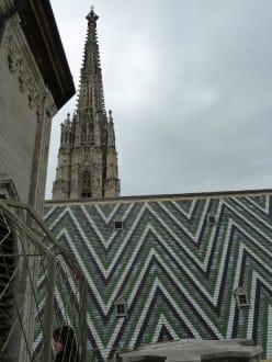 Blick vom Dom - Stephansdom