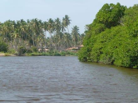 Erlebnisreiche Flussfahrt - Bootstour Negombo