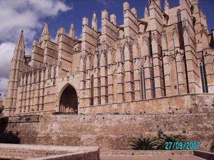 Sicht vom Meerespark - Kathedrale La Seu
